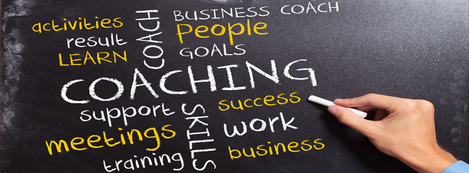 Business Coaching & Startup